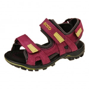 ECCO Urban Safari     /fuchsia