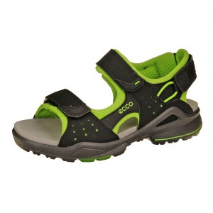 ECCO Biom sandal /black/green flash
